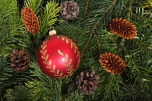Christmas in Perth Amboy