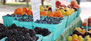 Raritan Bay YMCA Farmers Market